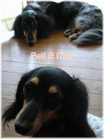 2008-08-19-07.jpg