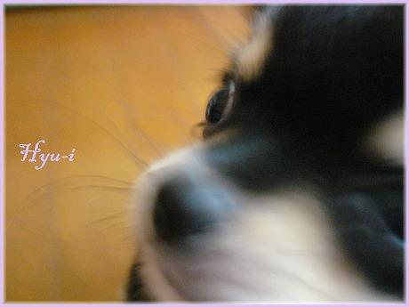 2008-08-26-06.jpg