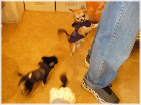 2008-09-21-16.jpg