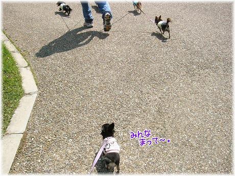 2008-09-23-15.jpg