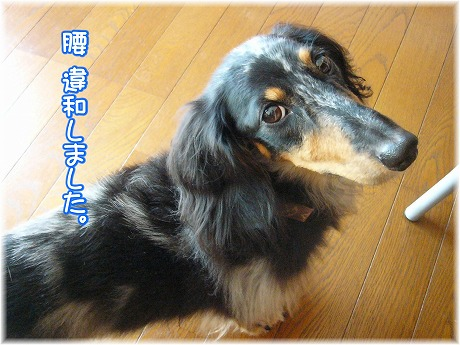 2008-10-08-07.jpg