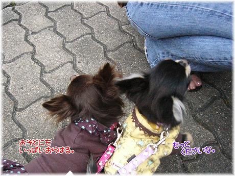 2008-10-12-19.jpg