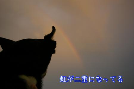 虹をバックに5