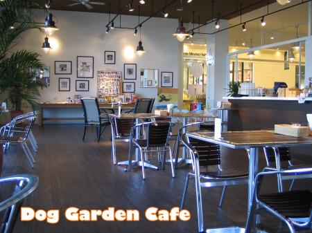 ステキカフェ《Dog Garden Cafe》2