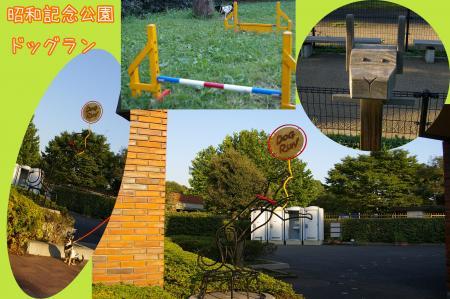 昭和記念公園で大暴れ3
