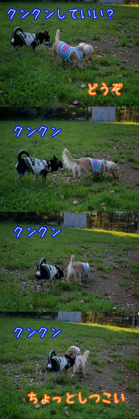 昭和記念公園で大暴れ5