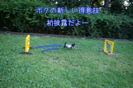 昭和記念公園で大暴れ6