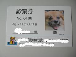 339_20100328195441.jpg