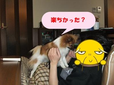 715_20110114001331.jpg