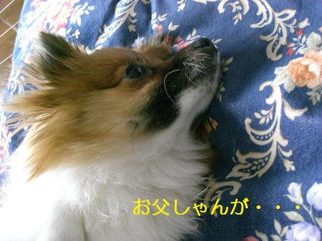 74_20100112204043.jpg