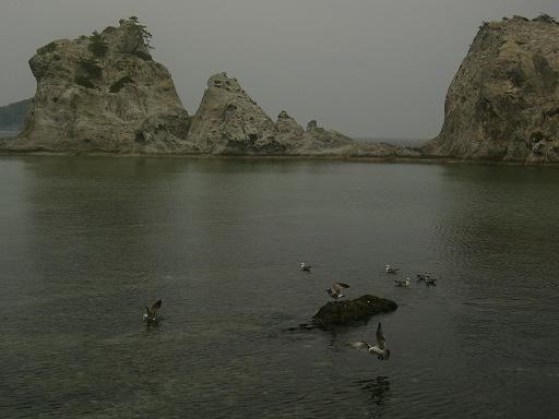岩手浄土が浜