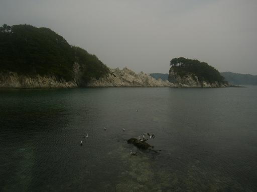 岩手 浄土が浜 岩