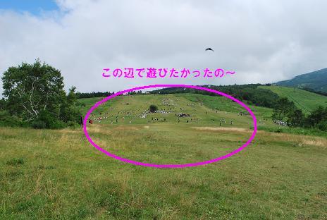 画像 1210-30