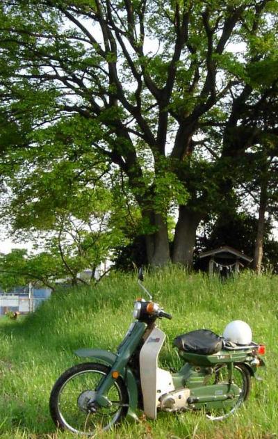 ヤマハメイトと丘の上の祠