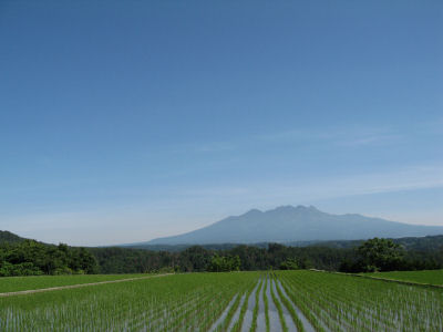 田と八ヶ岳