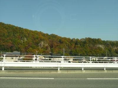 七里岩の紅葉