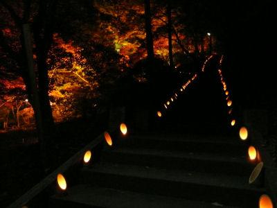 紅葉とろうそくのつく階段