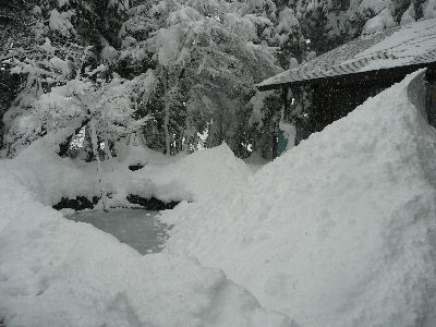 一晩でけっこう降った雪