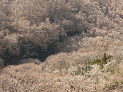 冬の終わりの渓谷
