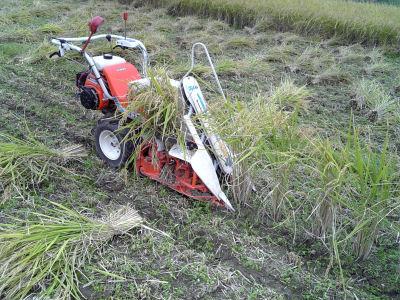 稲刈り中のバインダー