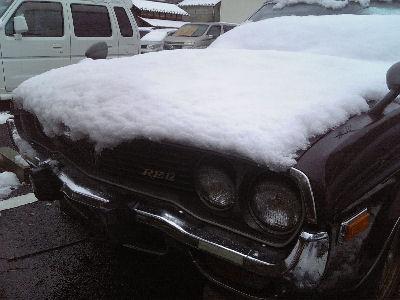 ルーチェと東京西部の雪