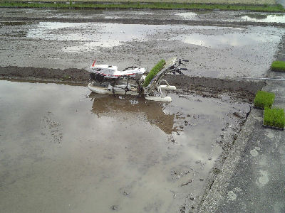たんぼとクボタの田植え機