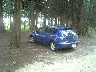 林の中のアクセラ