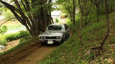 ルーチェと新緑の田舎道