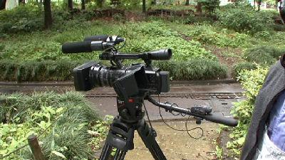 新緑とソニーのハイビジョンカメラ V1J