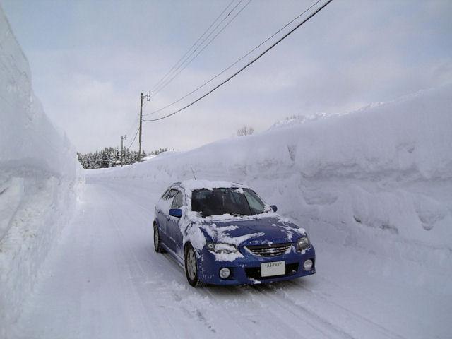 雪の壁とBJファミリア