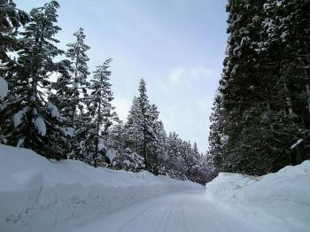 雪景色の道路