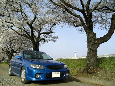 マツダ ファミリアと桜