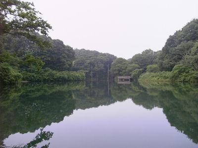 長池公園の築池