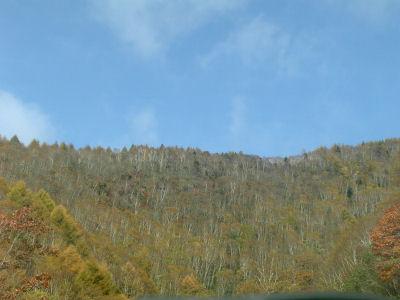 紅葉の山-2006-1