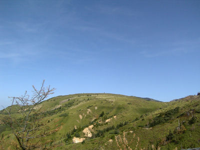 緑の山と青空