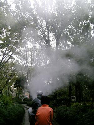 水蒸気が上がる今日