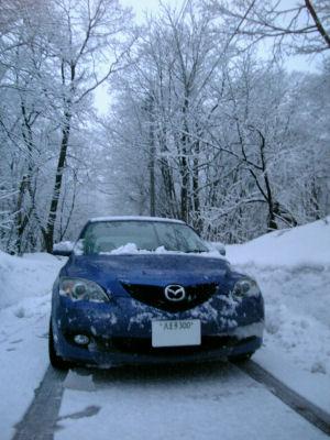 アクセラと雪化粧した木々