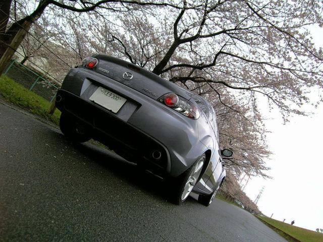 RX-8[SE3P]と桜'07
