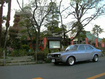 マツダルーチェと桜の咲く高幡不動