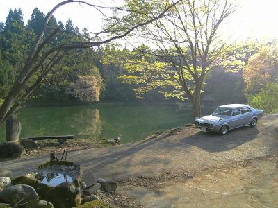 マツダルーチェと春の池と桜とお堂