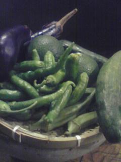 河内長野野菜たち