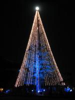 X'mas tree_051216