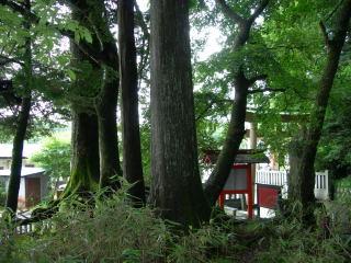 hokusei003.jpg