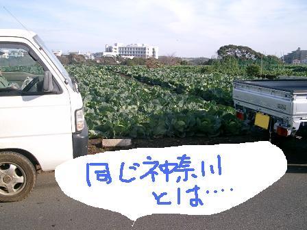 2008-1223-16.jpg