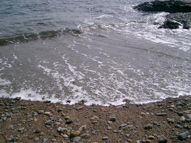 20090318-09.jpg