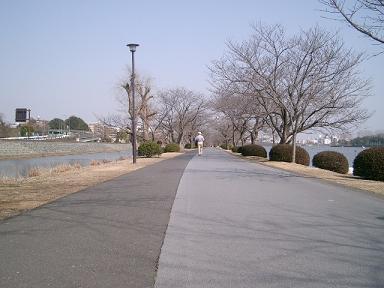 20090318-48.jpg