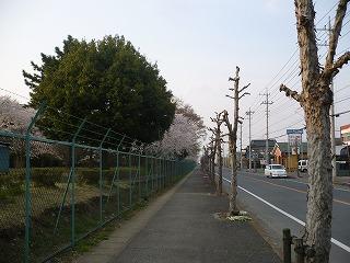 P1250492.jpg