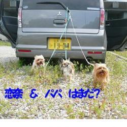 a_20080523024229.jpg