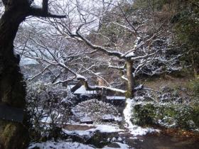 DVC00047  雪景色