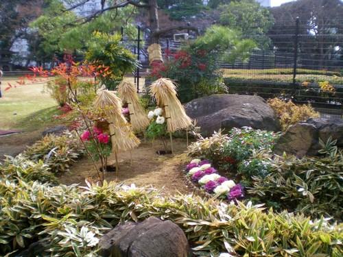 旧岩崎邸庭園 015